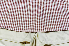 Plaid red dress Stock Image
