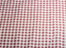 Plaid red dress Royalty Free Stock Photos