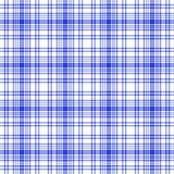 Plaid sans joint blanc bleu Images stock