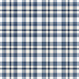 Plaid sans joint blanc bleu images libres de droits