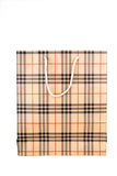 Plaid Shopping Bag Royalty Free Stock Photo