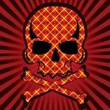 Plaid skull. Illustration background Royalty Free Stock Photo