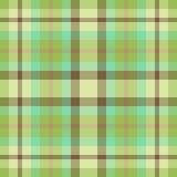 Plaid verde e marrone Fotografie Stock Libere da Diritti