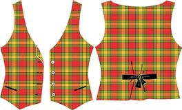 Plaid Vest Royalty Free Stock Image