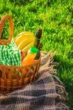 Plaid voor een picknick op het gras Royalty-vrije Stock Afbeeldingen