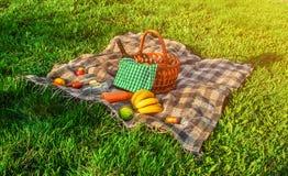 Plaid voor een picknick op het gras Stock Fotografie