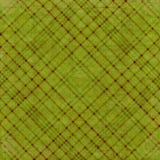 Plaidhintergrund des olivgrünen Grüns Stockbild