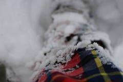 Plaidhosen im Winterschnee Lizenzfreies Stockfoto