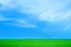 Plain. With green herb under sky and cloud year solar daytime royalty free stock photography