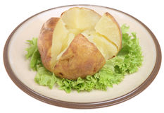Plain Baked Potato. On a bed on lettuce Royalty Free Stock Image