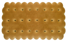 Plain biscuit. Stock Images