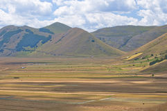 Plain of Castelluccio of Norcia in summer Royalty Free Stock Photography