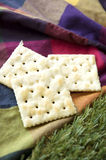 Plain crackers Stock Photos