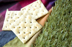 Plain crackers on color background Royalty Free Stock Images