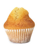 Plain cupcake Stock Image
