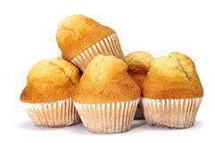 Plain cupcakes Royalty Free Stock Photography