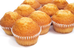 Plain cupcakes Royalty Free Stock Images