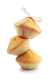Plain cupcakes with bow Royalty Free Stock Images