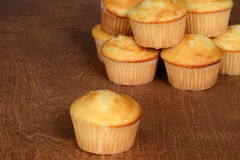 Plain cupcakes Stock Photography
