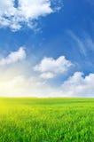 Plain and deep blue sky. Plain and blue sky. Nature composition Stock Photos