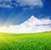 Plain and deep blue sky. Plain and blue sky. Nature composition Royalty Free Stock Image