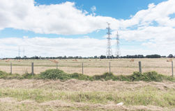 Plain field. Along one road leading into Melbourne city Royalty Free Stock Photo