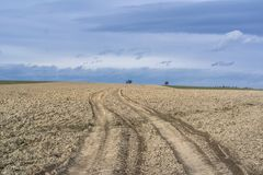 Plain and flat farmland and field royalty free stock images