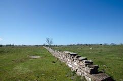 Plain grassland with stone wall Royalty Free Stock Photo