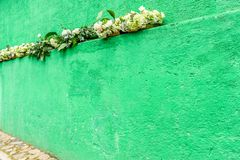 Green painted house wall with white flowers royalty free stock photography