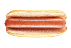 Plain hot dog with big sausage Stock Image