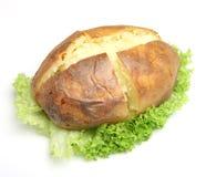 Plain Jacket Potato. With lettuce Stock Photo