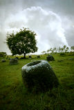 Plain Of Jars Royalty Free Stock Image