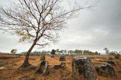 Plain of Jars in Xieng Khouang, Laos. Plain of Jars, an archaelogical site in Xieng Khouang, Laos stock images