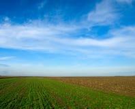 Plain landscape. Green Plain landscape in Vojvodina Royalty Free Stock Photos