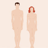 Plain man and woman body. Figures of a man and a woman Royalty Free Stock Images