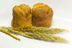 Plain muffin isolated on white background Royalty Free Stock Image
