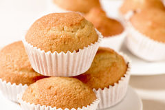 Plain muffins on a set table. Closeup of some appetizing plain muffins in a white ceramic plate on a set table Royalty Free Stock Photography