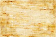 Plain papyrus Stock Photography