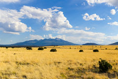 Plain and peak. The San Francisco Mountains including Humphreys Peak in Arizona. Prairie in the foreground Royalty Free Stock Photo
