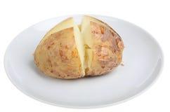 Plain Potato Royalty Free Stock Images