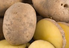 Plain Potatoes Stock Images
