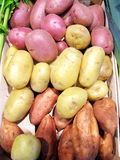 Plain Potatoes and sweet potatoes Stock Photos