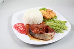 Plain rice with braised loin on catfish, fried tofu and boiled g stock image