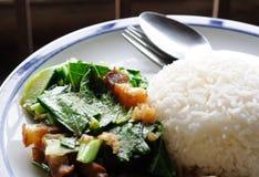 Plain rice deep fried spring with crispy pork Stock Photo