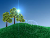 Plain sky, green-land and an exotic tree Royalty Free Stock Image