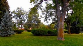 Plain Sky, Not so Plain Park. A plain sky contrasts with the beauty of the Rose Park Stock Photos