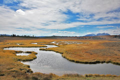 The plain and stream in Yellowstone national park Stock Photos