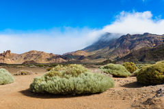 Plain in Teide National Park Tenerife Stock Photo