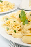 Plain Tortellini Close up Royalty Free Stock Image