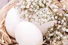 Plain undecorated Easter eggs in a nest royalty free stock image